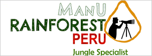 >Manu Rainforest Peru